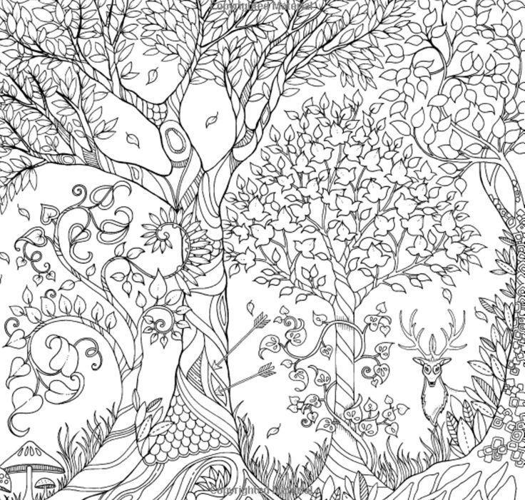 AWESOME List Of Adult Coloring Books