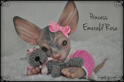 Sphynx Cat Doll Kit Cat Doll Sphynx Cat Sphynx