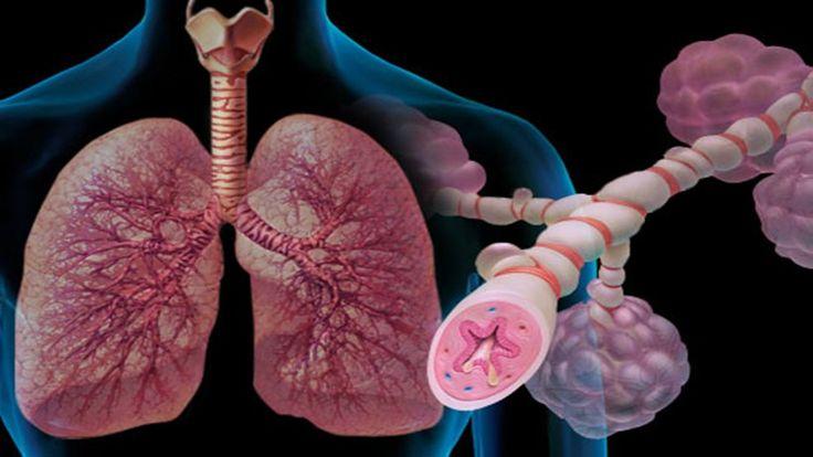 Alergia Respiratória - Oque é Sintomas e Tratamento | Dicas de Saúde