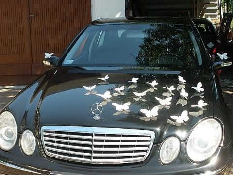 butterflay car, wedding decoration