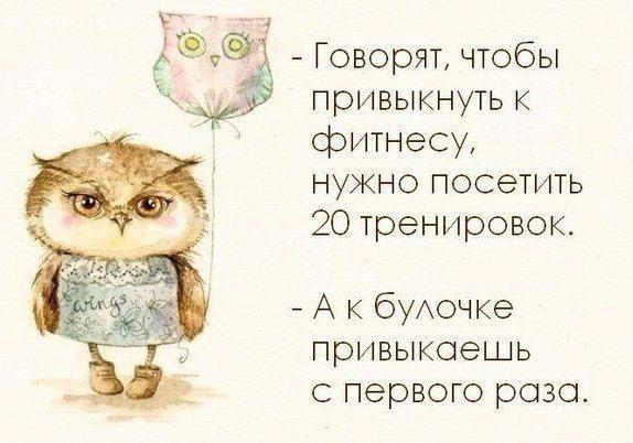 Совы, совушки, а также красивые цитаты со смыслом в нашей группе Вконтакте - в Лавке творческих идей #Совы #Совушки #ЛавкаТворческихИдей
