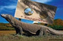 3 Miracle of Komodo Island