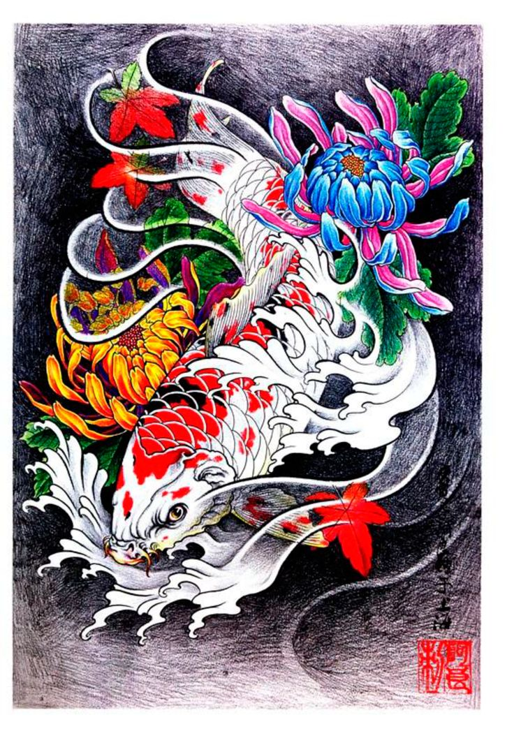 87 best fish images on pinterest drawings fish and fish for Colorful fish book