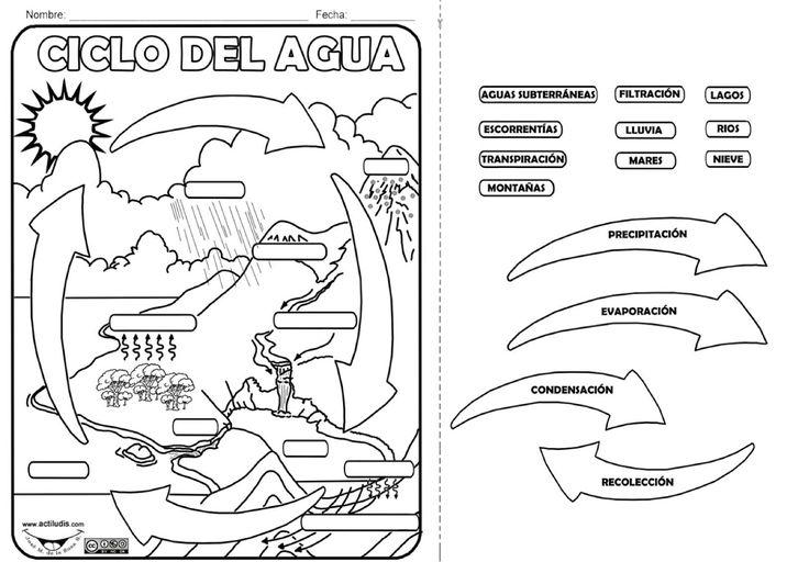 Ciclo+agua+-+Actividad.jpg (1600×1114)
