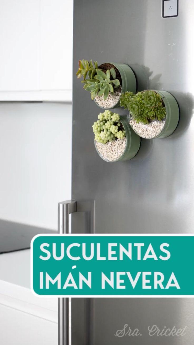 Succulent Wall, Succulent Arrangements, Succulent Terrarium, Cacti And Succulents, Upcycled Crafts, Diy Home Crafts, Diy Home Decor, House Plants Decor, Plant Decor