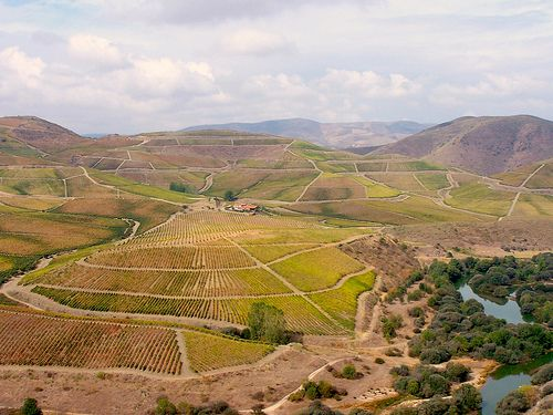 Walking - Douro and Historical Villages