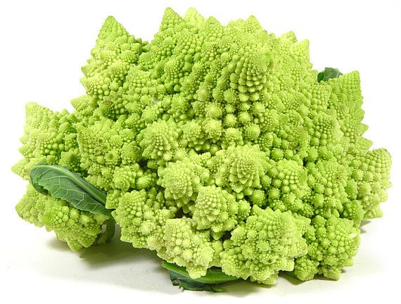 Broccoli Romanesco | 22 Insanely Cool Conversation-Piece Plants For Your Garden