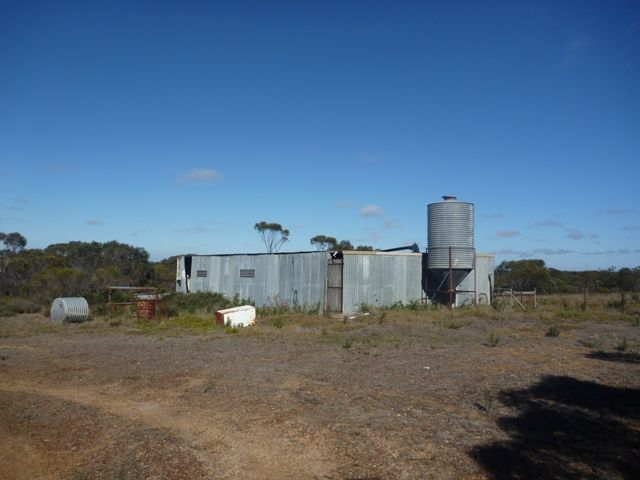 The pig shed