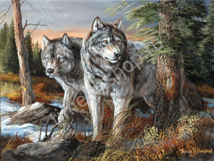 """Trevor Swanson """"Серые волки"""", картина раскраска по номерам, картина своими руками, размер 40*50см, цена 750 руб."""