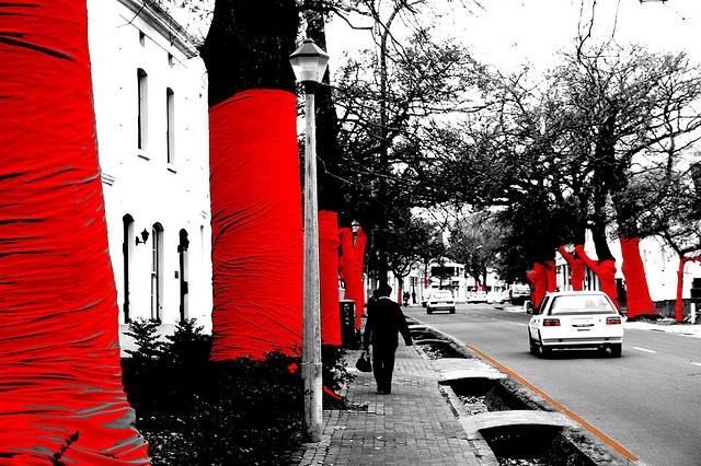 Strijdom van der Merwe - Land Art Installation of 393 trees wrapped in red material in Dorp Street Stellenbosch, '08.