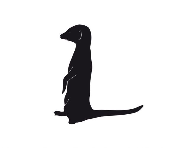 Cute Meerkat Tattoo Design. Maybe Behind The Ear Or On The
