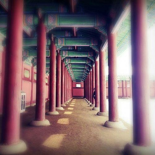 Take a peek. (Gyeongbokgung, Seoul)