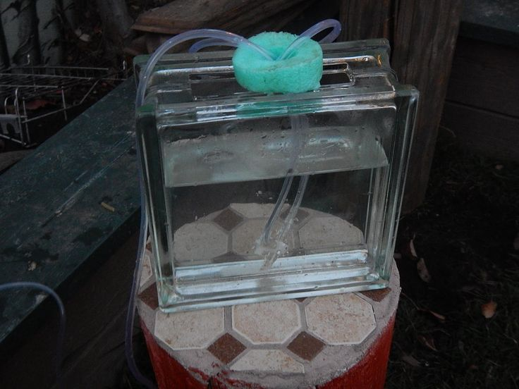 How To Make A Simple Air Lift Pump Air Lift Water Pumps