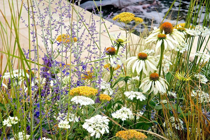 The Al Fresco summer garden at the RHS Hampton Court Palace Flower Show 2014 / RHS Gardening