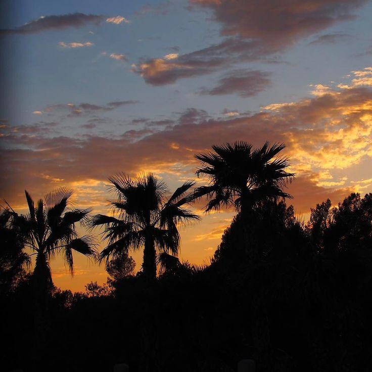 Coucher de soleil @esterelcaravaningfrance  Une belle journée à profiter de la piscine chauffée à profiter du transat... bouquiner... la bulle totale!!! #esterel #esterelcaravaning #cotedazurnow #sunset #coucherdesoleil #palmiers #palm #camping #mobilhome http://themouse.org