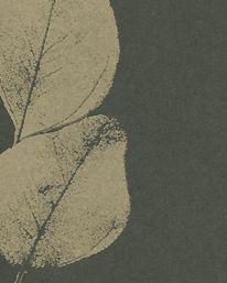 Tapet Leaf Black/Gold från Jocelyn Warner
