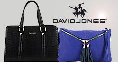 #sac à #main pour #femme David Jones