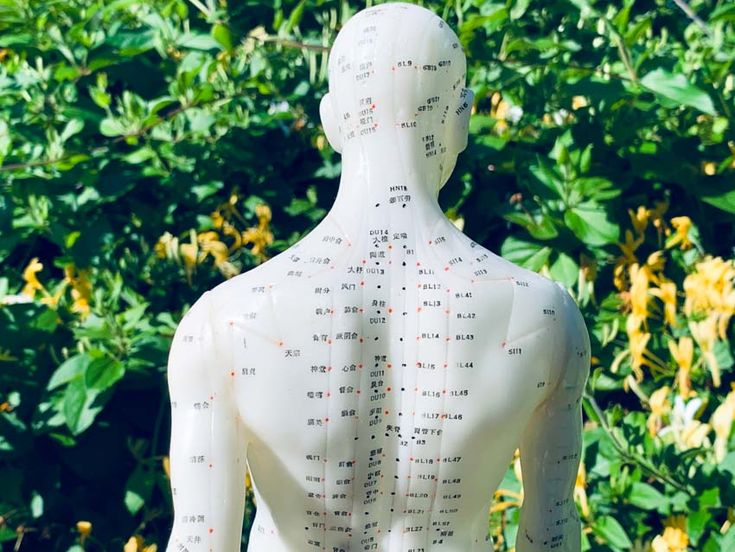 Acupuncture And Herbs Found Effective For Lung Infections