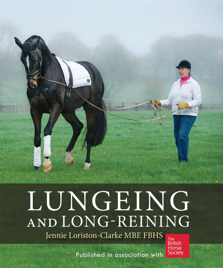 Lungeing and Long-Reining by Jennie Loriston-Clarke | Quiller Publishing. A step-by-step guide to training, exercising and suppling horses from the ground, written by Britain's leading exponent of the art. #horse #riding #training #equine #equestrian #country #countryside #book #guide #kenilworth #long #reining #canter