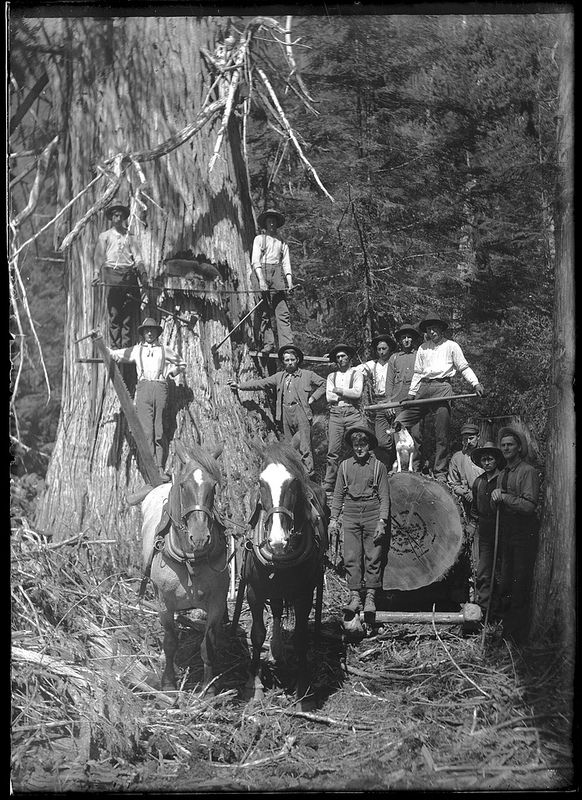 Loggers with logging equipment. VPL_1803 | by Vancouver Public Library…