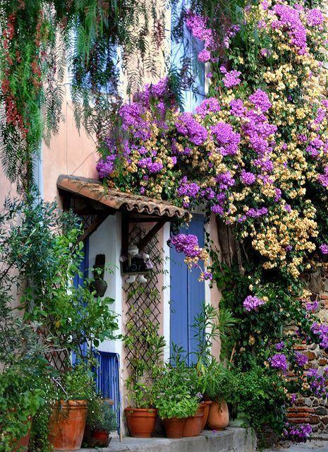 花咲く玄関 - <フランス、プロバンス地方グリモー>