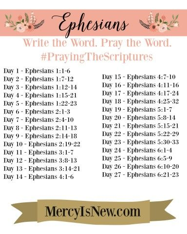 Ephesians Write the Word Pray the Word