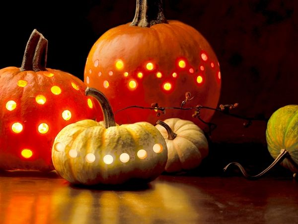 Тыква с дырочками. Необычное оформление Хэллоуина. #Хэллоуин #Helloween  #оформлениехэллоуина #страшныйхеллоуин #фонарьджека #Хеллоуин #оформление #декор #дизайн #банкет  #флористика #композиция