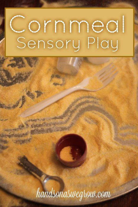 Sensory Activity with Corn Meal to Explore