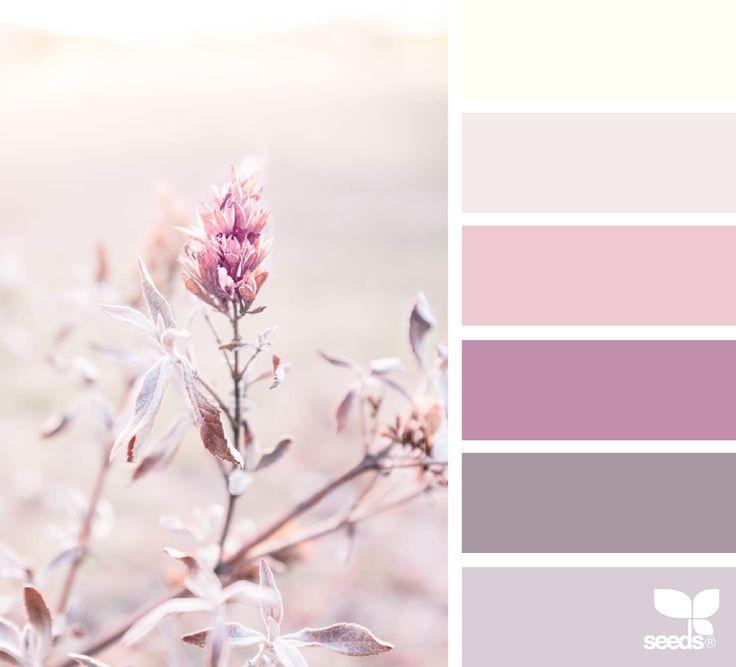 { nature tones } image via: @lisaridgelyphotography