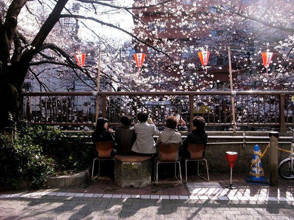乾久美子+東京藝術大学 乾久美子研究室 展 小さな風景からの学び|展覧会について|TOTOギャラリー・間