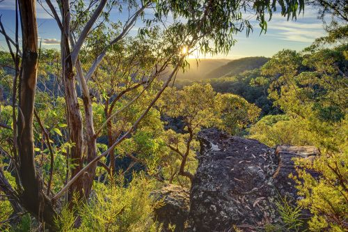 Daytrip - Blue Mountains - Springwood - Martins Lookout