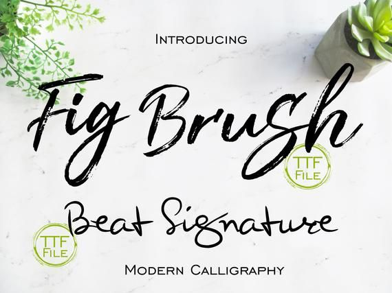 Fonts Set Digital Font Modern Calligraphy Brush Script Font