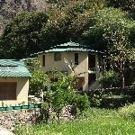 India, Jilling Estate (Nainital, India) - Steve
