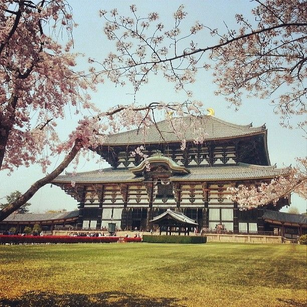 The Todai-ji temple in #Japan. Photo courtesy of xsnapshots888 on Instagram.