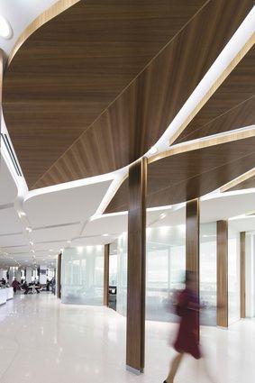 Virgin Australia Lounge Melbourne:Tonkin Zulaikha Greer Architects