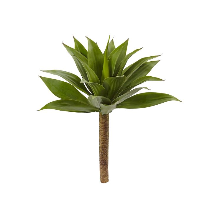 nearly natural Artificial Agave Plant, Green