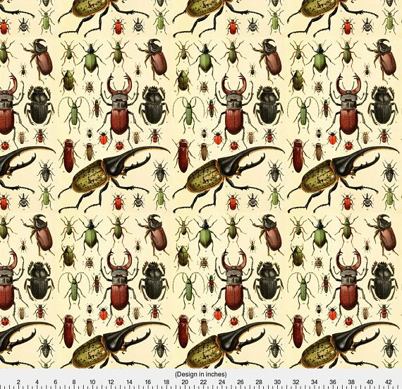 1 yard (or 1 fat quarter) of Beetles Insect Taxonomy Print Engraving Bug by designer magnoliacollection. Printed on Organic Cotton Knit, Linen Cotton Canvas, Organic Cotton Sateen, Kona Cotton, Basic Cotton Ultra, Cotton Poplin, Minky, Fleece, or Satin fabric. Available in yards and