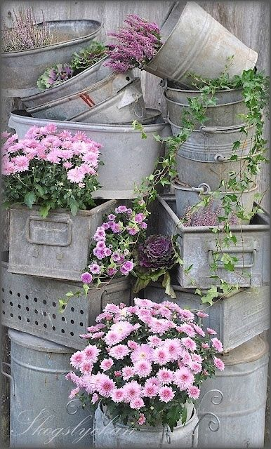 grey and purple shabby chic flowers planted in vintage tin containers