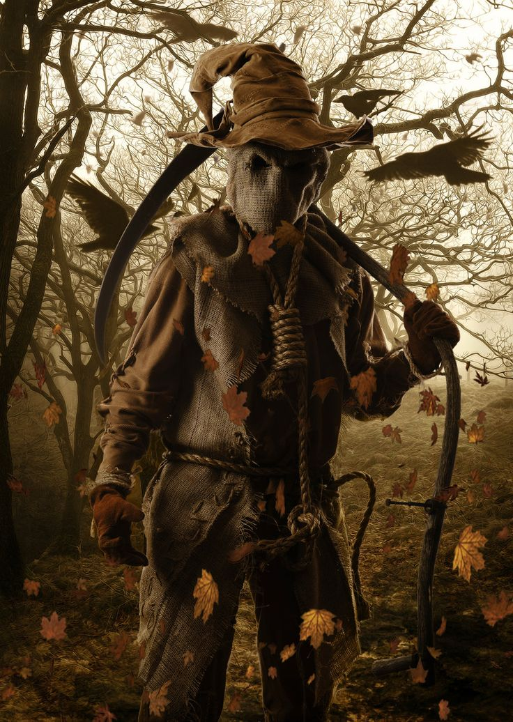 the scarecrow by sgorbissadeviantartcom on deviantart i would not want to - Halloween Scare Crow