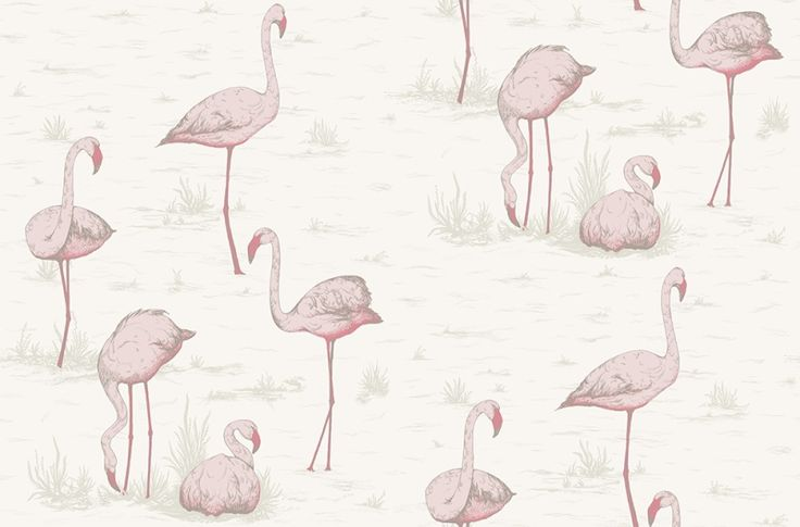 Flamingos (95/8045) - Cole & Son Wallpapers - Fantastic feature wall paper with pink flamingoes on a soft off white background. More colours are available. Please order a sample for true colour match. Paste-the-wall product.