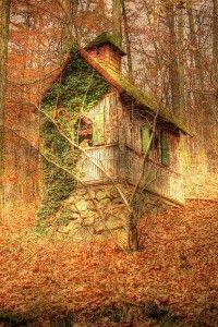 Secret-Cabin