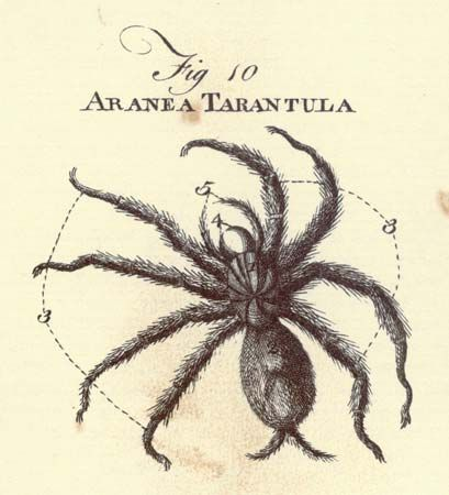 Illustration from the Encyclopaedia Britannica 1st edition