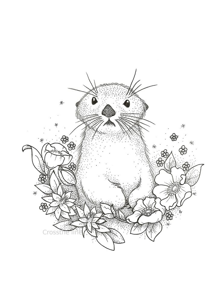 Loutre entourée de fleurs - dotwork - print - reproduction : Dessins par cross-the-line