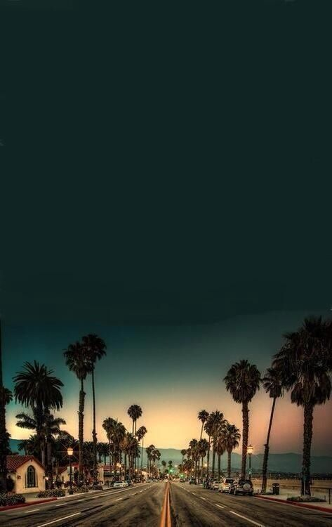 California: Palm Trees sunset on the road. Tough to pick which place I went to in Cali was my fav...I loved them all!