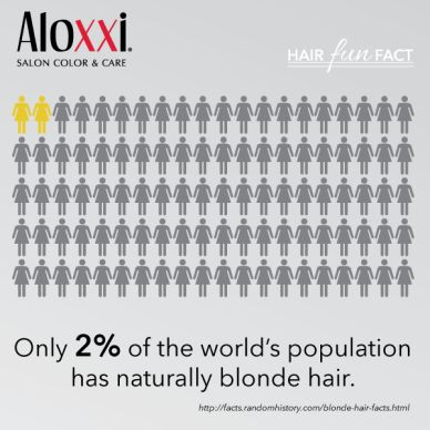 Hair FUN Fact: Only 2% of the world's population has naturally blonde hair. | blonde hair | statistics | hair stats | hair trivia