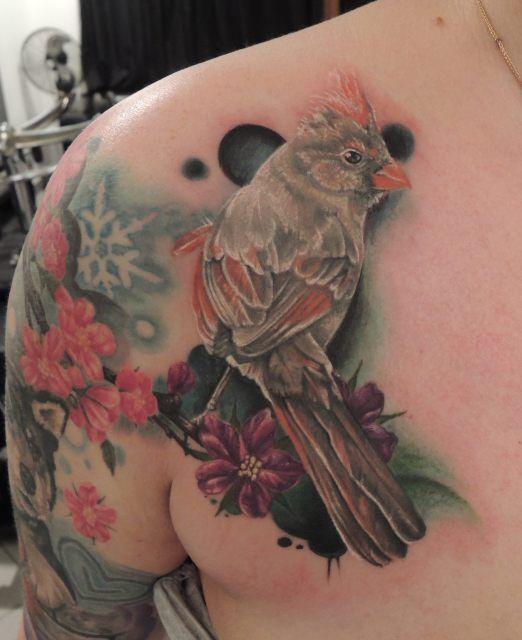 Tattoo Ideas Magazine: 534 Best Images About Bird Tattoos On Pinterest
