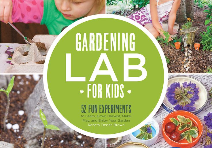 Nice new book filled with all kinds of DIY gardening projects you can do with kids.