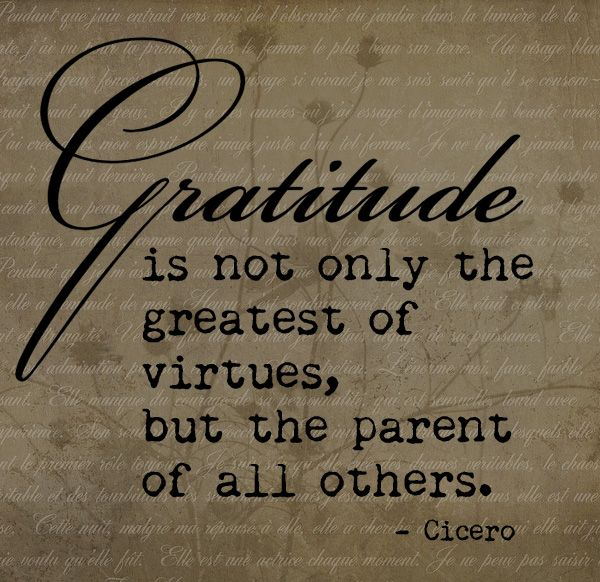 29 best images about Gratitude Quotes on Pinterest
