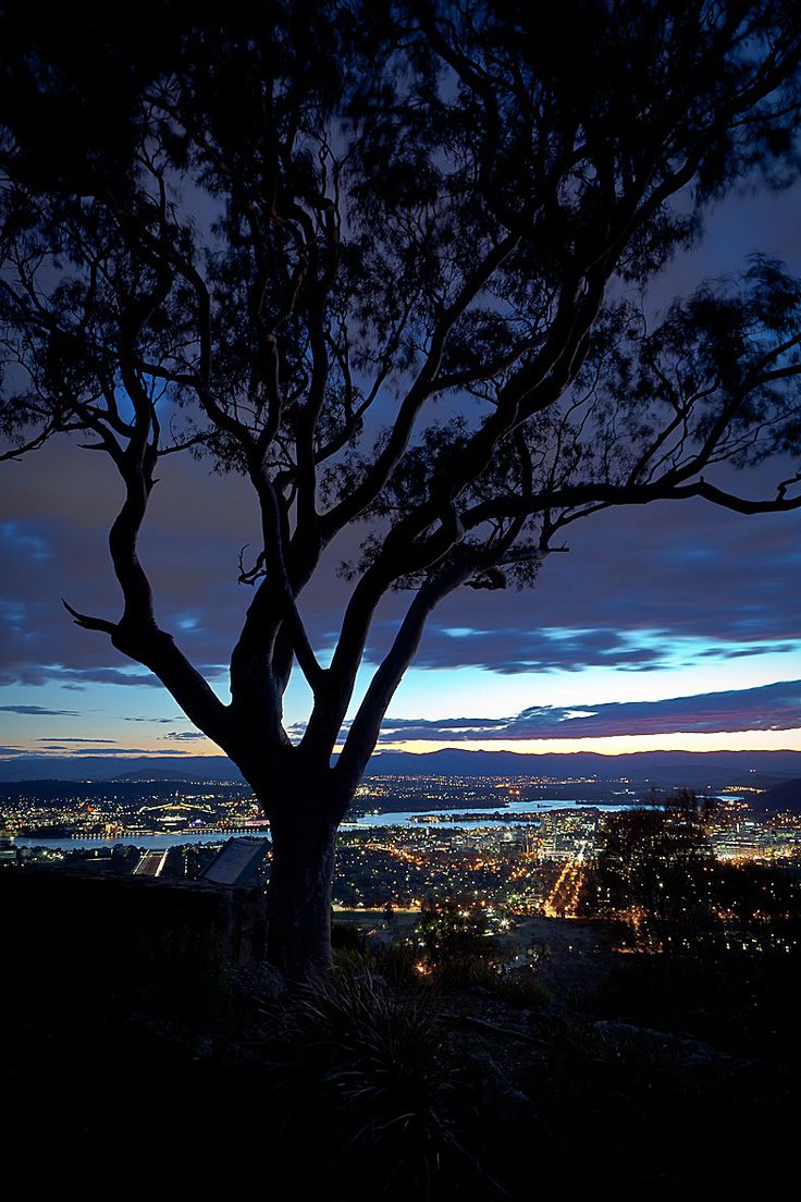 Beautiful Canberra.