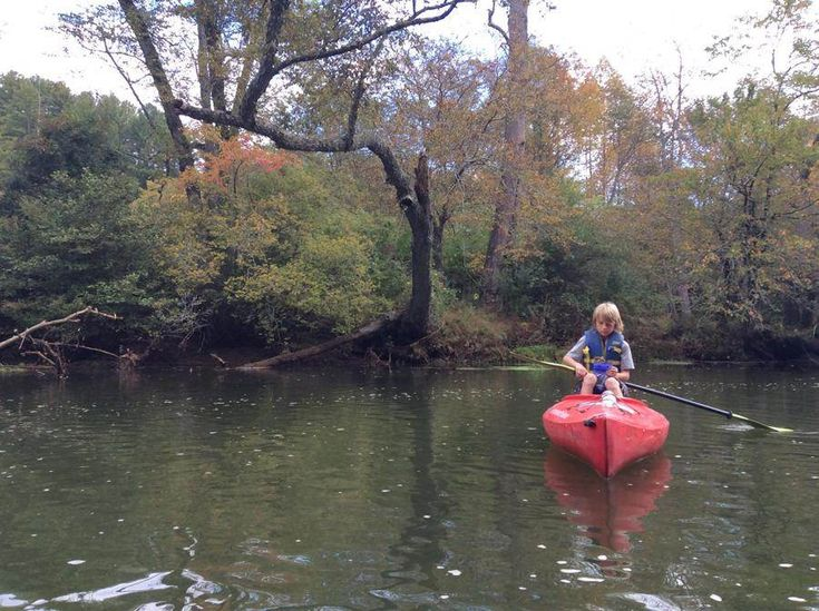 Kayak the beautiful toccoa river in the north